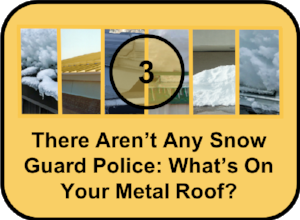 There Aren't Any Snow Guard Police
